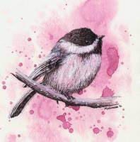 Bird I by MsMe20