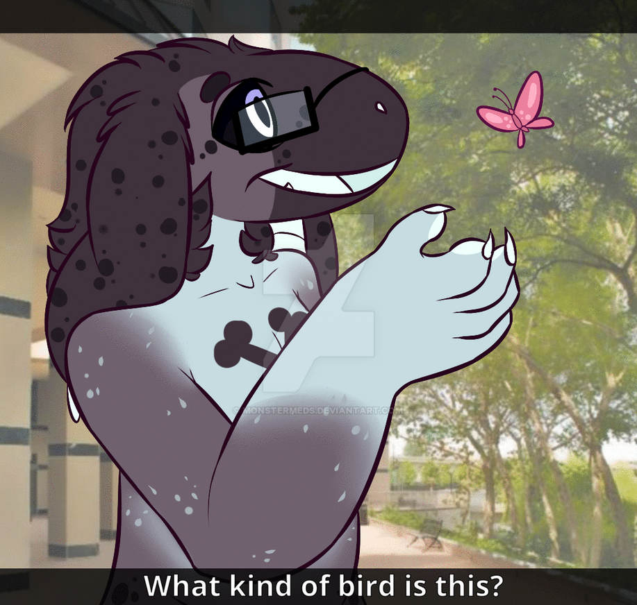 What kind of bird is this? by MonsterMeds
