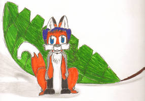 Kyte The Fox by KyteTheFox