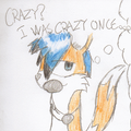 Crazy? I was crazy once... by KyteTheFox
