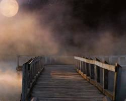 Fog Premade by phantomstockps