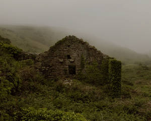 Abandoned Premade