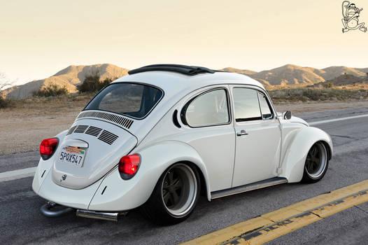 Californian Beetle