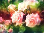 Rose Edit