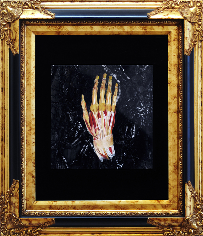 Oil painint of the Anotomical Hand on Black Marble by Meddling-With-Nature