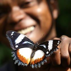 Butterfly Keeper by encrust