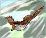 Lunahawk-94 Art-trade: Talon