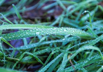 Droplets by CrawlingGirl