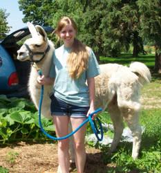 Llama Training1