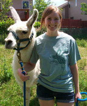 Llama Training2
