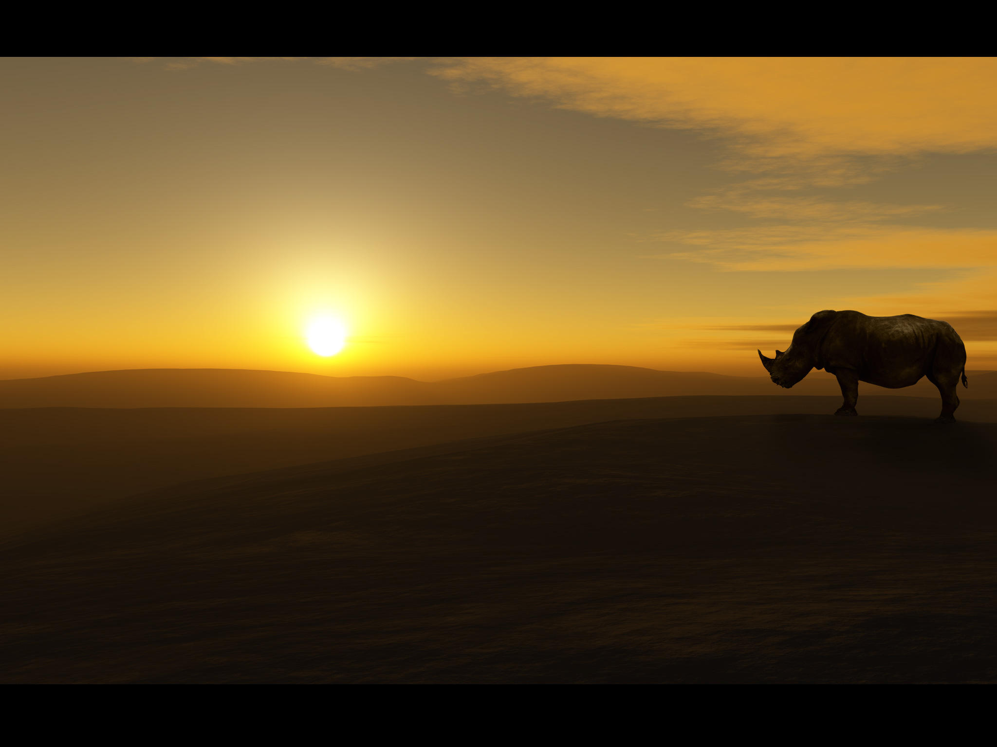 Wallpaper - Rhino View by emailandthings