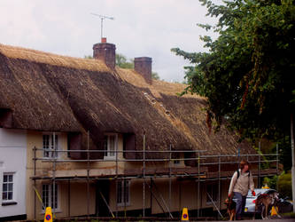 Thatch Patch by Clangston
