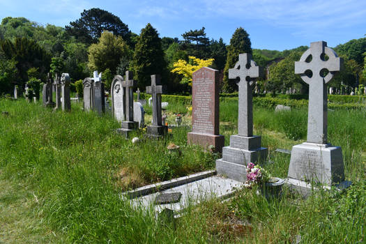 Row of Departed