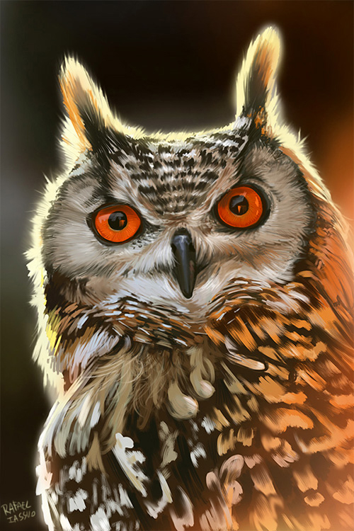The Owl by iassu