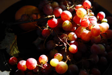Grapes from our vine