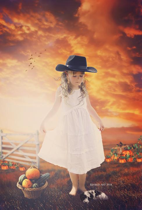 Country pumpkin by Jeni-Sue