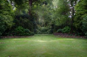 Garden 4 by Jeni-Sue