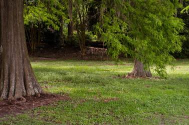 Gardens 1 by Jeni-Sue