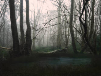 Creepy Forest Water Background by Jeni-Sue