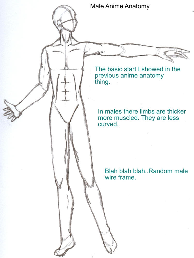 Anime Boy Body Structure Lektonfo