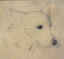 Beautiful sketch of Lucy on wood by Jokerfan79