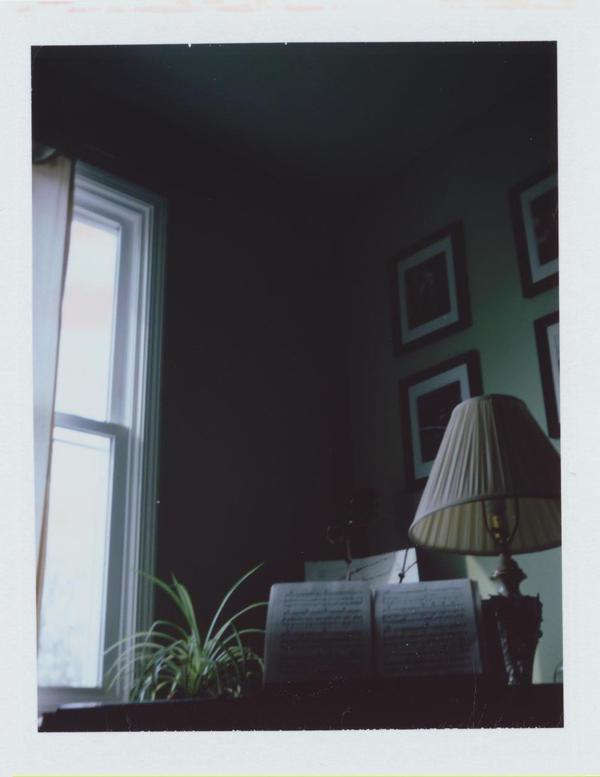 Polaroid VI