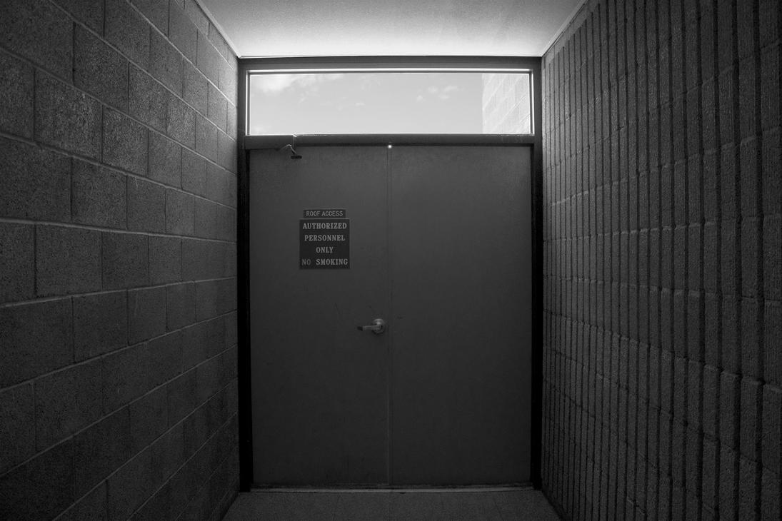 Authorized Entry by wauterboi
