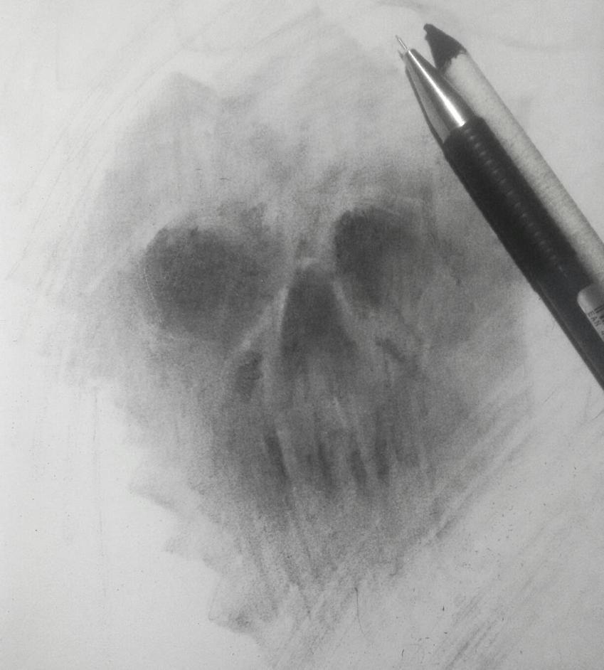 skull study by wahsyuck