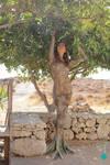 Kacee Tree Tf By Undersphere0 2