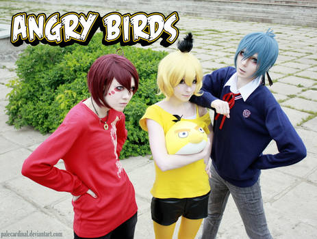 Angry birds: red, yellow, blue