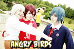 Angry Birds: white, red, blue