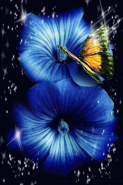 Sparkle by EnchantedHawke