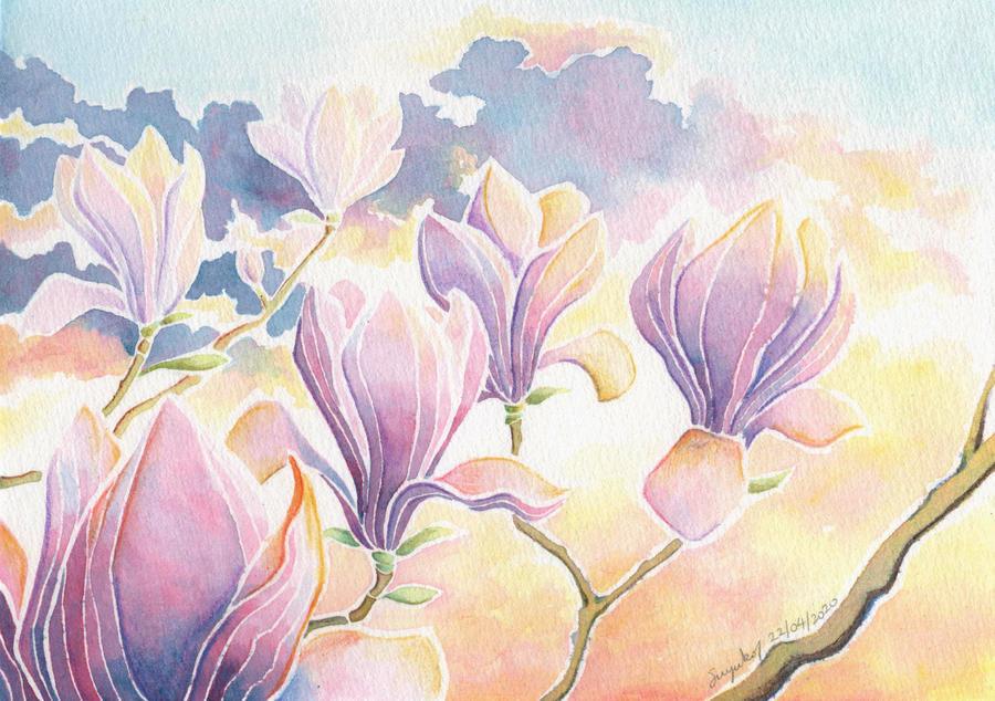 Sunrise Magnolia
