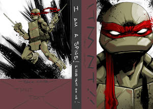 TMNT IDW collection vol1 (pt1)