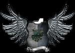 Heraldic Shields -Ferrodwynn