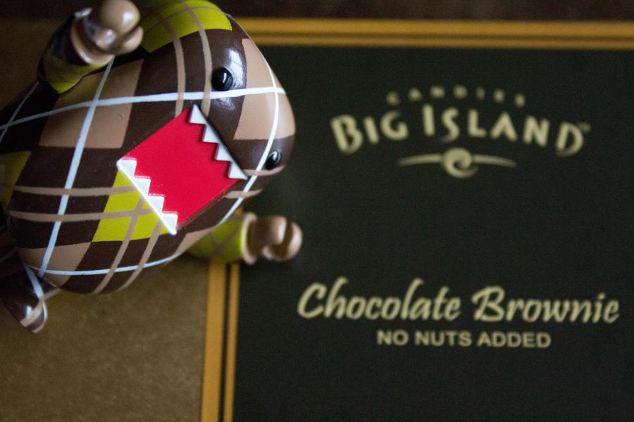 Big Island Candies Owner