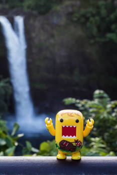 Domo waterfall!
