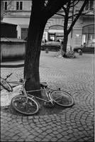 bikes by M0rt