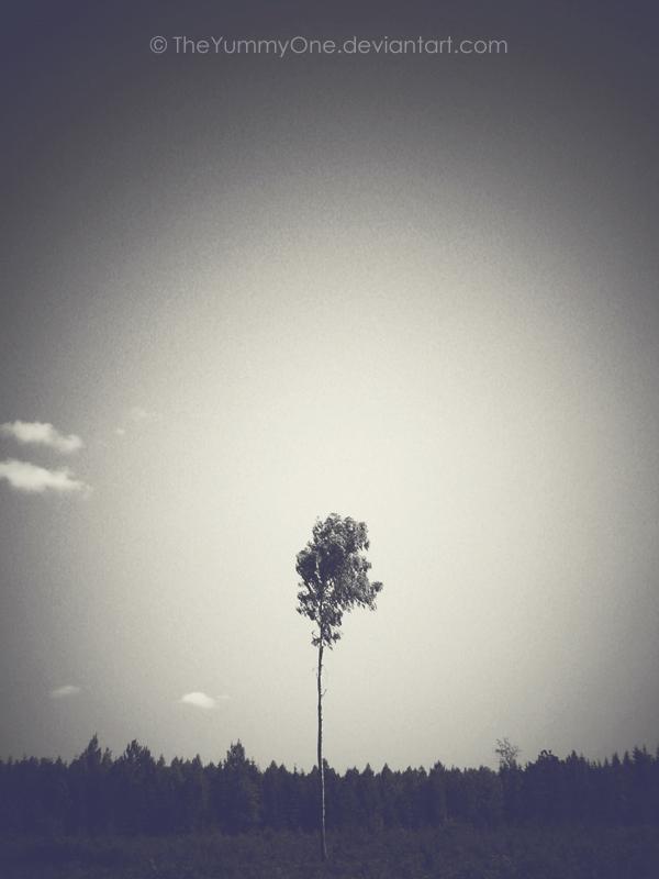 All alone by TheYummyOne