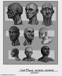 Face Planes- studies by larissa-the-hanyou