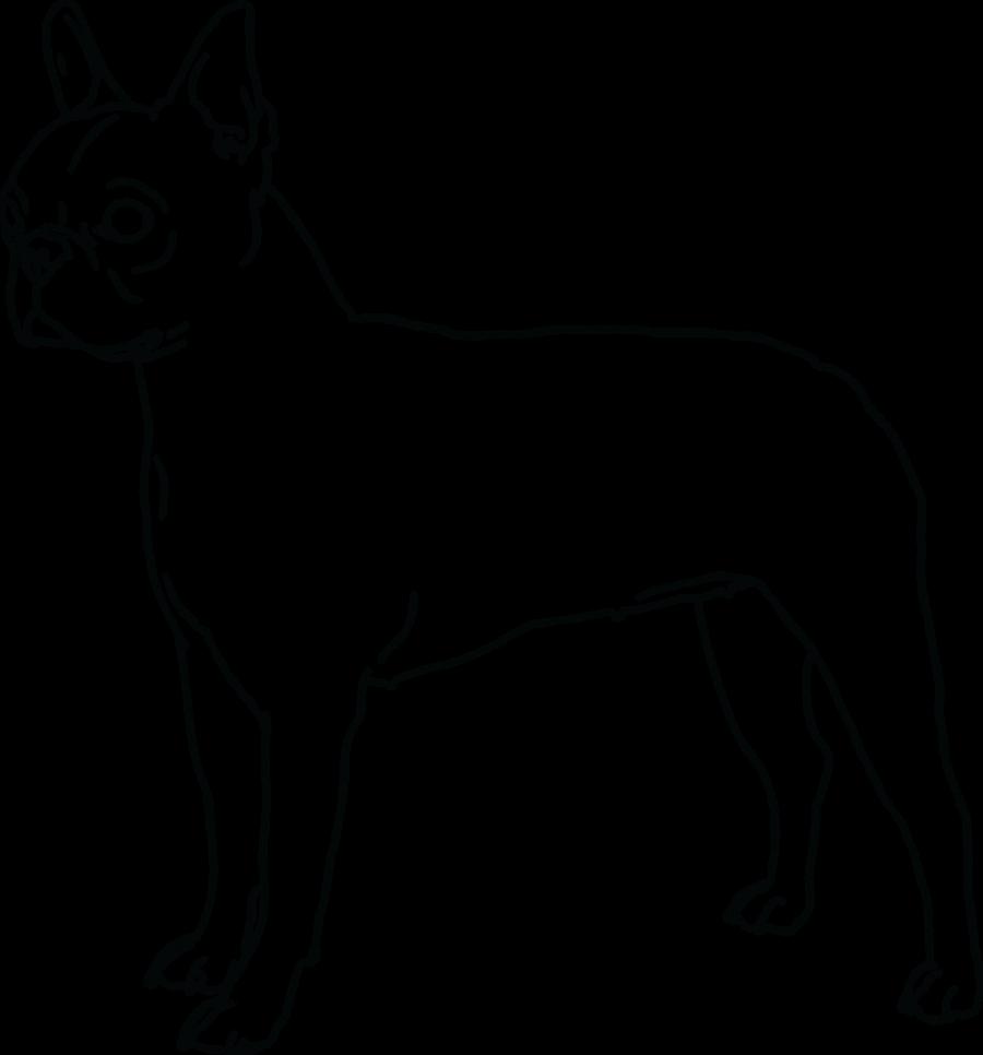 boston terrier lineart by doggiedoodles on deviantart