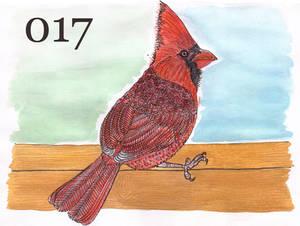 Happy Bird-Day Project 017 Cardinalis cardinalis