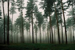 Nebel by kearone