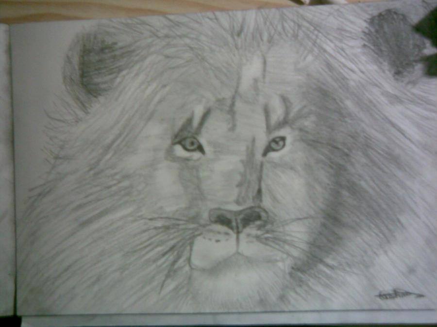 La pequeña galería off-topic de Reina Kiara. Lion_portrait_by_burbujitafdejabon-d3818t0