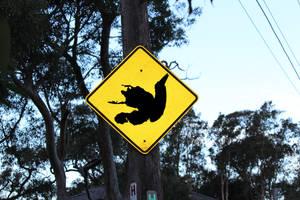 Warning: Dead Ducks Ahead by PipeDreamNo20