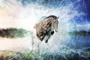 my brain says stop, my heart says go by Aquila-Art
