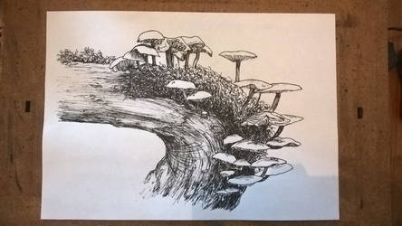 Toadstools - inktober 3 by delph-ambi