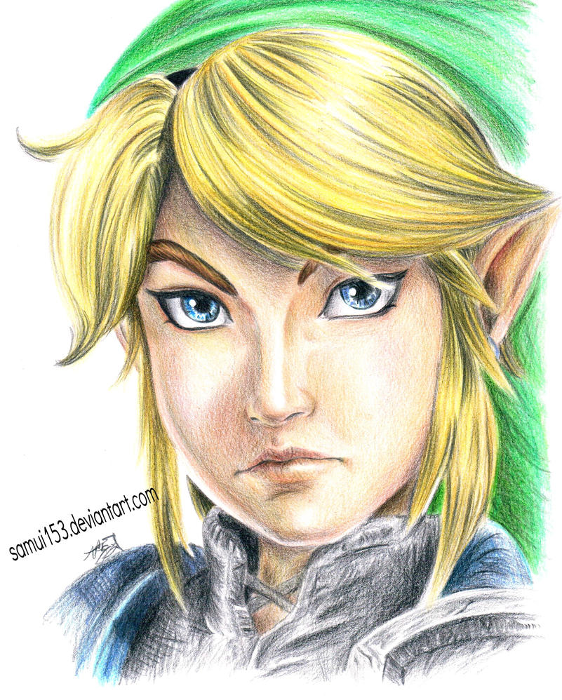 Link - Hyrule Warrior by samui153