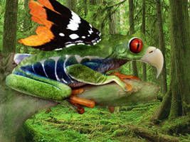 Frog Eagle Butterfly by Fennic