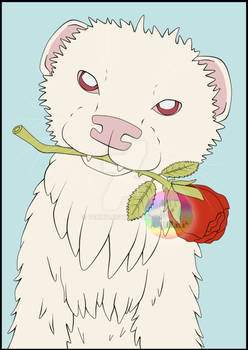 Ferret with a rose